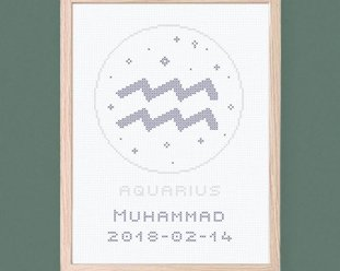 Aquarius - Zodiac signs